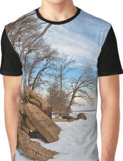 Rugged Winter Beach Graphic T-Shirt