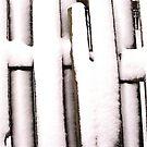 Cold Fence by WildestArt