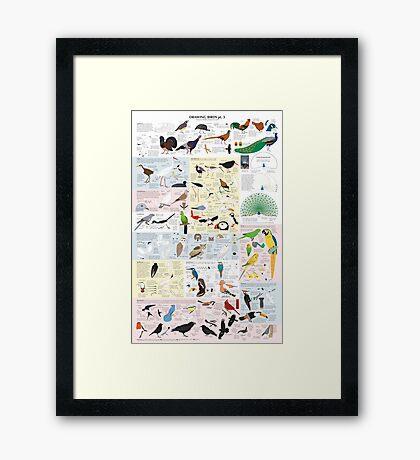 Drawing Birds 3 Framed Print