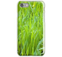 Fresh Green Grass iPhone Case/Skin