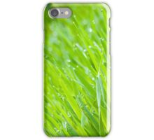 Fresh Green Grass 6 iPhone Case/Skin
