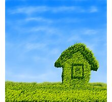 Eco house  Photographic Print