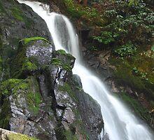 Laural Falls by Tiffany Sanders