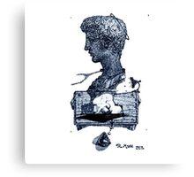 Serie 3/4. Nº 6 Canvas Print
