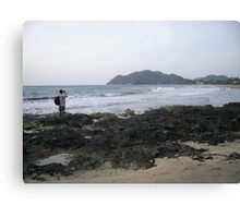 Capturing the Beauty Canvas Print