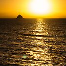 Ball of fire - Palm Cove by Norman Repacholi