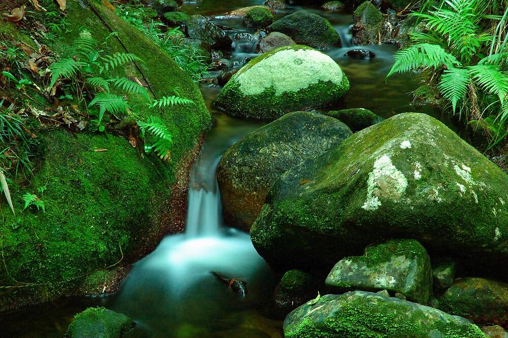 little stream by matthew maguire