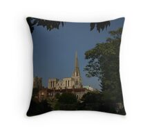 Propped Indian Bean Tree Throw Pillow