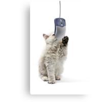 Cat n mouse Canvas Print