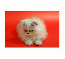 Cute cat 2 Art Print