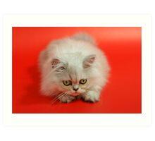 Cute cat 4 Art Print