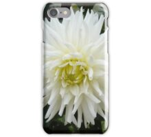 LARGE WHITE PLEASURE iPhone Case/Skin