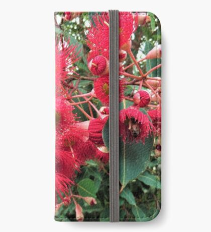 Gum Nut Tree Blossom iPhone Wallet/Case/Skin