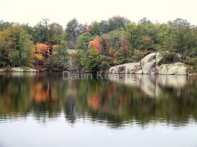 Cave Point In Fall by Dawn Kwasny