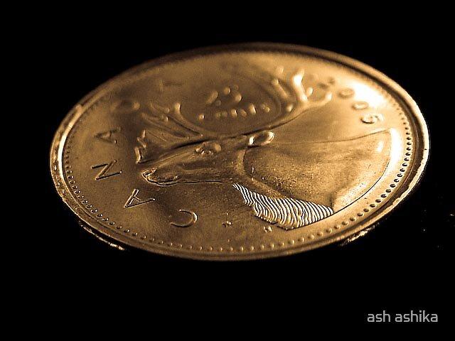coins by ash ashika