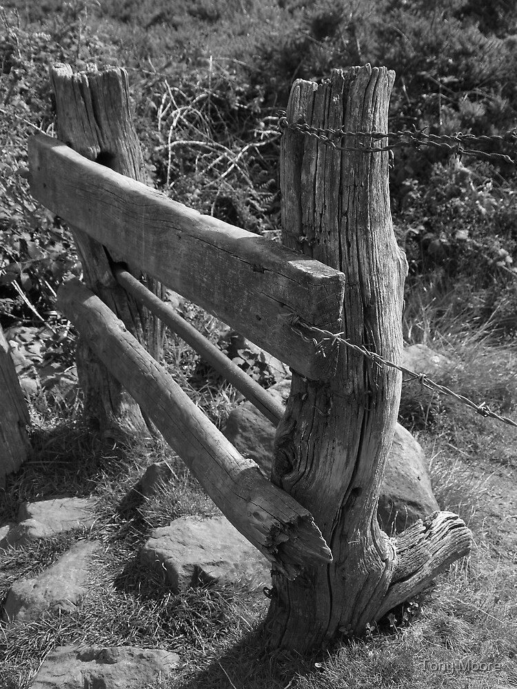 Old Stile by Tony Moore