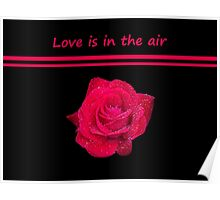 Rose Radtko - Love is in the air (I) Poster