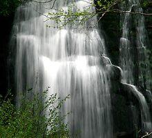 Meigs Falls II  by Gary L   Suddath