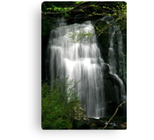 Meigs Falls II  Canvas Print