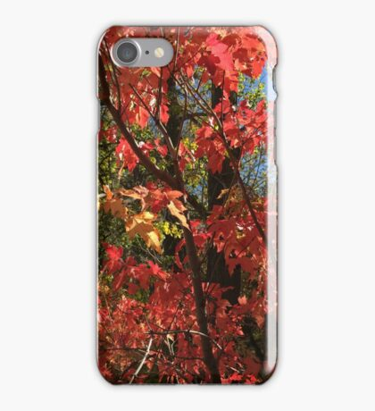 Colours of Fall iPhone Case/Skin