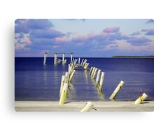 Waldens Beach Canvas Print