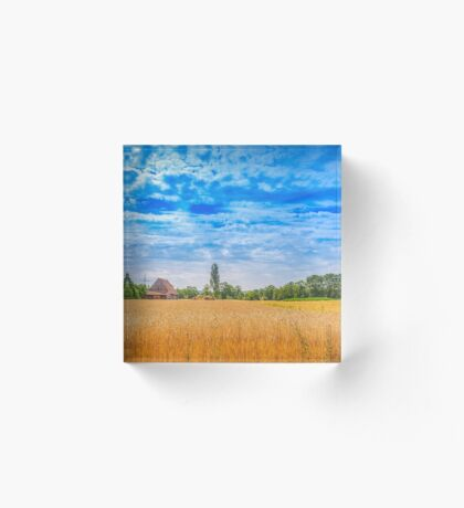 Summer field Acrylic Block