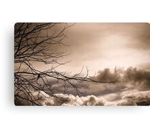I am master of a nothing place Canvas Print