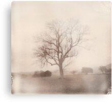 Polaroid 6 Metal Print