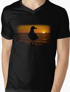 Seagull Sunset Mens V-Neck T-Shirt