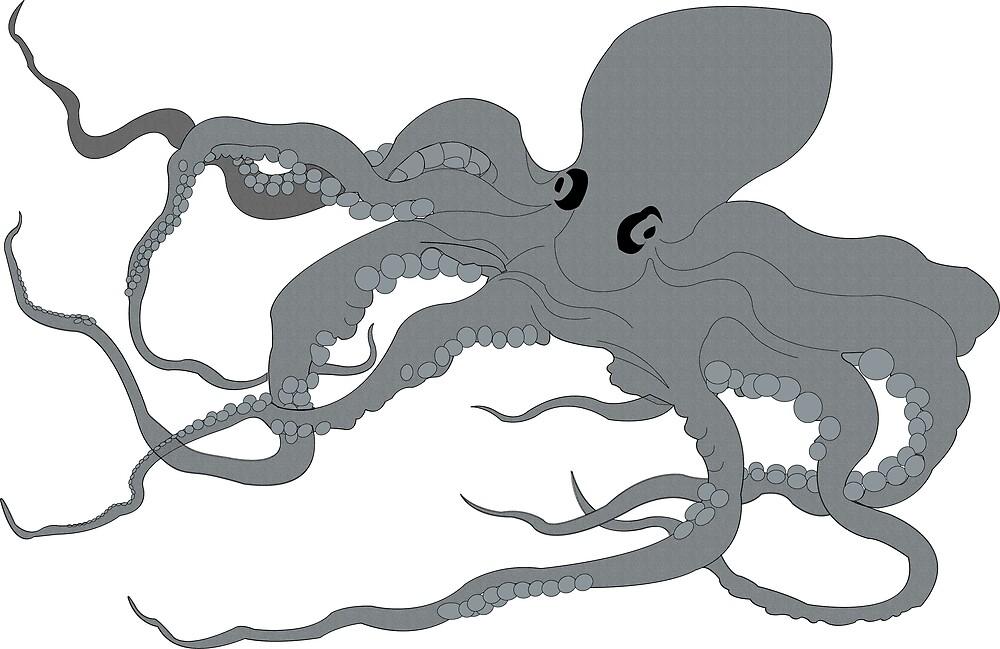 octopus by lauren lederman