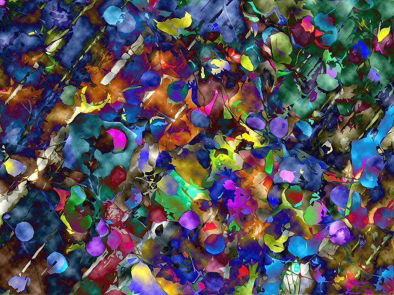 Confetti by Susan Zohn