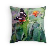 Banded Peacock Butterfly Throw Pillow