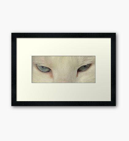 Look Into My Eyes ......... Framed Print