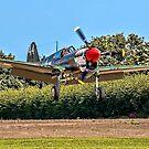 Curtiss P-40M Kittyhawk 43-5802 G-KITT by Colin Smedley