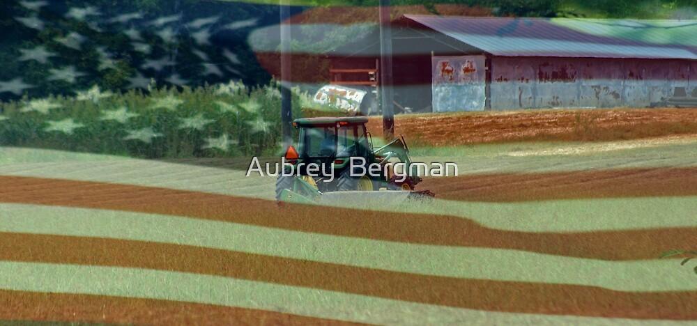 American Farmer by Aubrey  Bergman