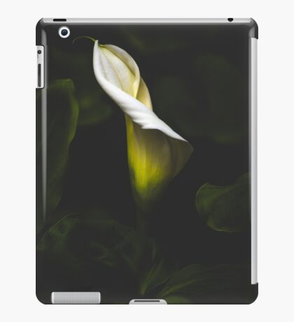 Waxing poetic about rhizomes iPad Case/Skin