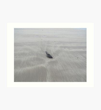 Seaweed and Sand Art Print