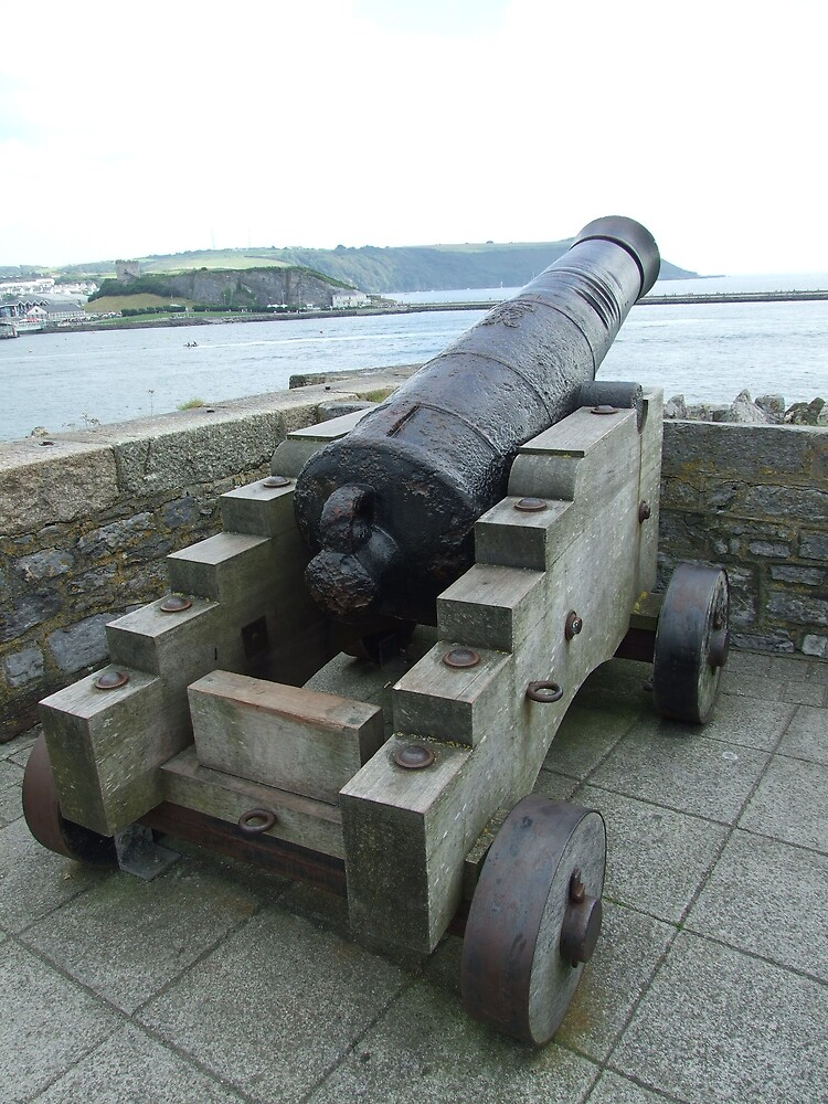 cannon3 by matjenkins