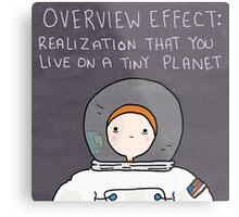 The Astronaut Metal Print