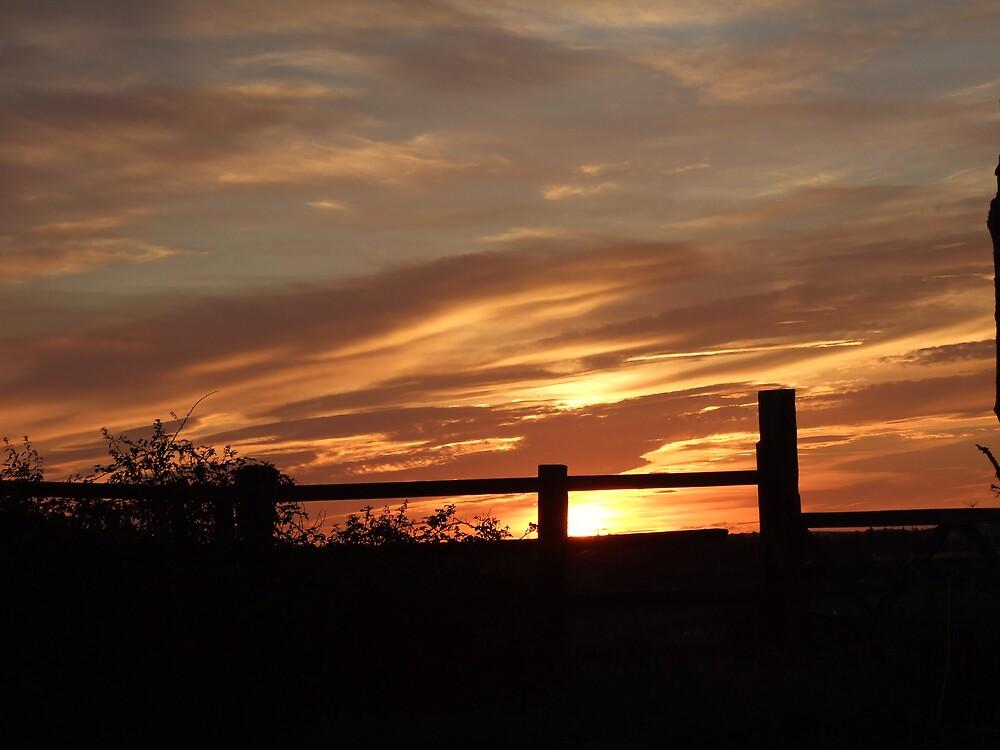 sunset21 by matjenkins