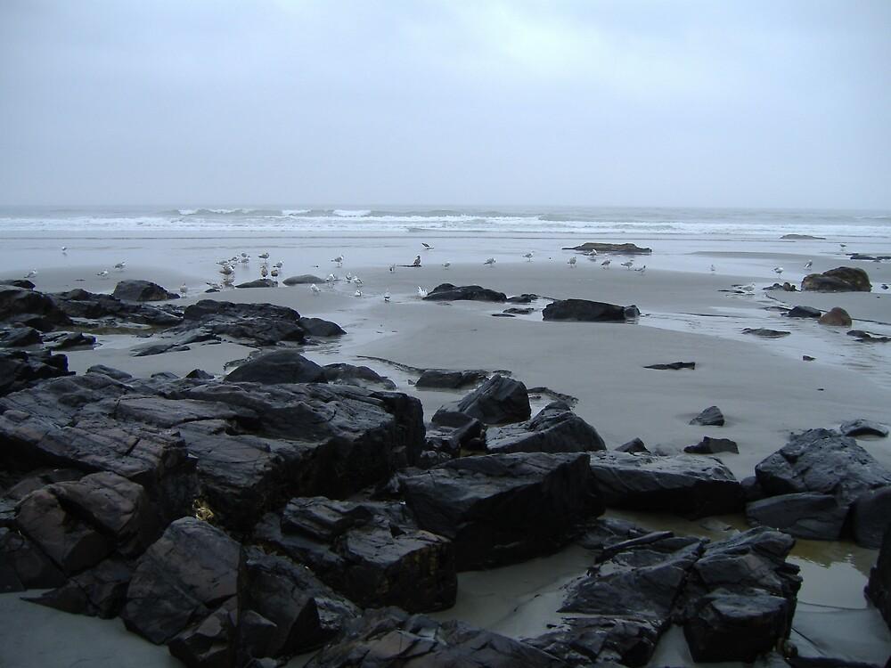 Maine Beach by bonejakon