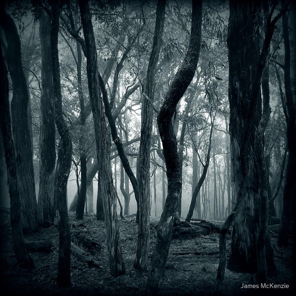 Lost Within by James McKenzie