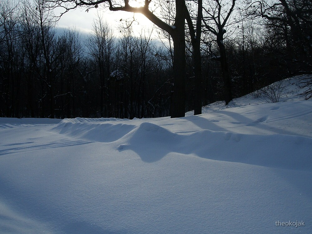 snow by theokojak