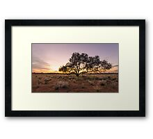 Outback sunrise Framed Print