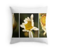Daisy Tryptich Throw Pillow