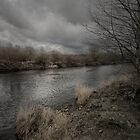 SUCH A GRAY DAY by leonie7
