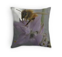 bee on lavender  in search of pollen Throw Pillow
