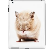 Sleepy Hamster iPad Case/Skin