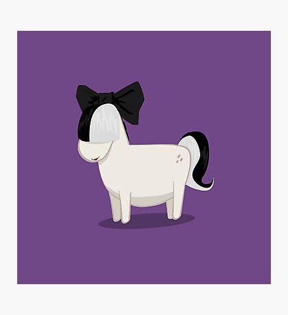 Pony :) Photographic Print