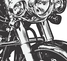 Harley Davidson Softail Deluxe by petrolhead
